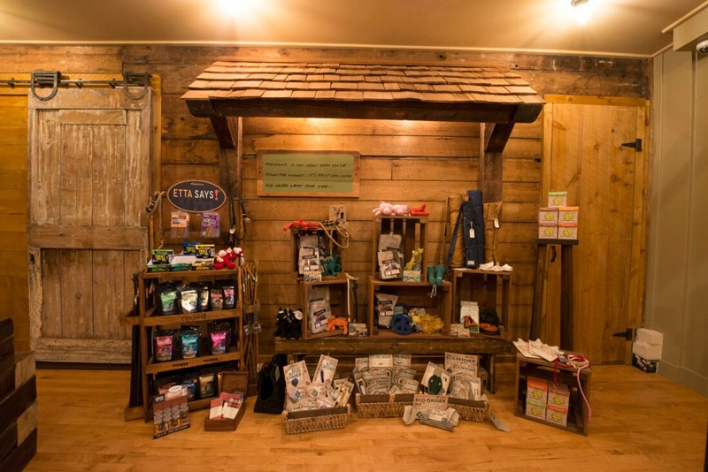 91126a993f0f0 ... A wall display of many toys for pets at our Seacoast Portsmouth NH shop